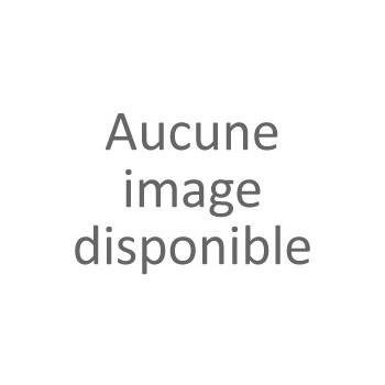 Boeuf pour fondue (non coupé)
